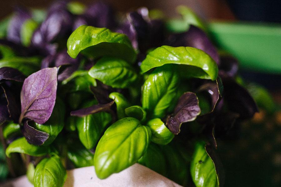 Gemüsekiste_20.9._online_6