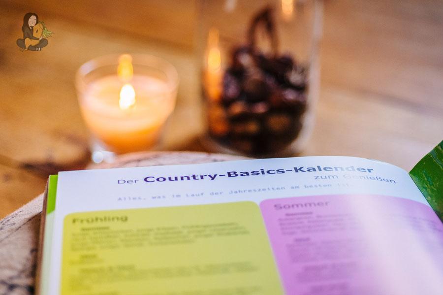 Country_Basics_2