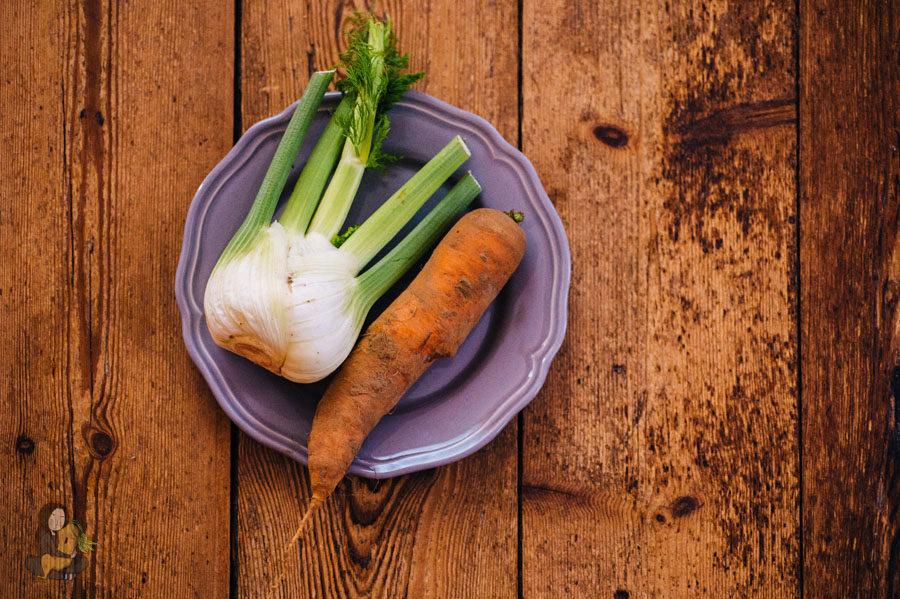 Fenchel-Möhren Salat1_online