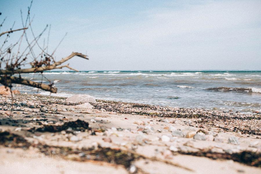 Tag am Meer_online(3 von 13)