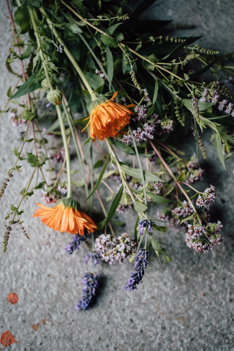 Garten Sommer 2015_Hochformat 0018