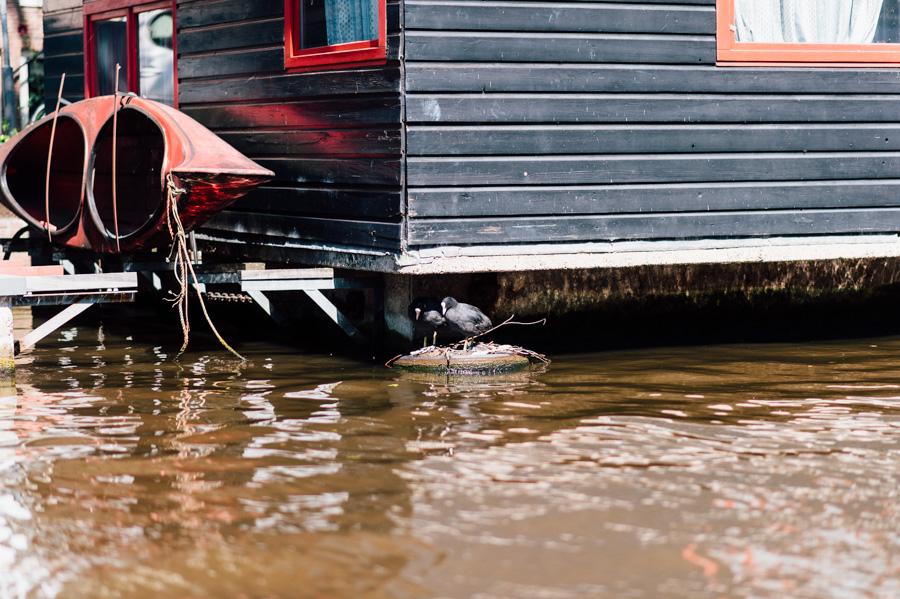 Ecover Amsterdam 0014