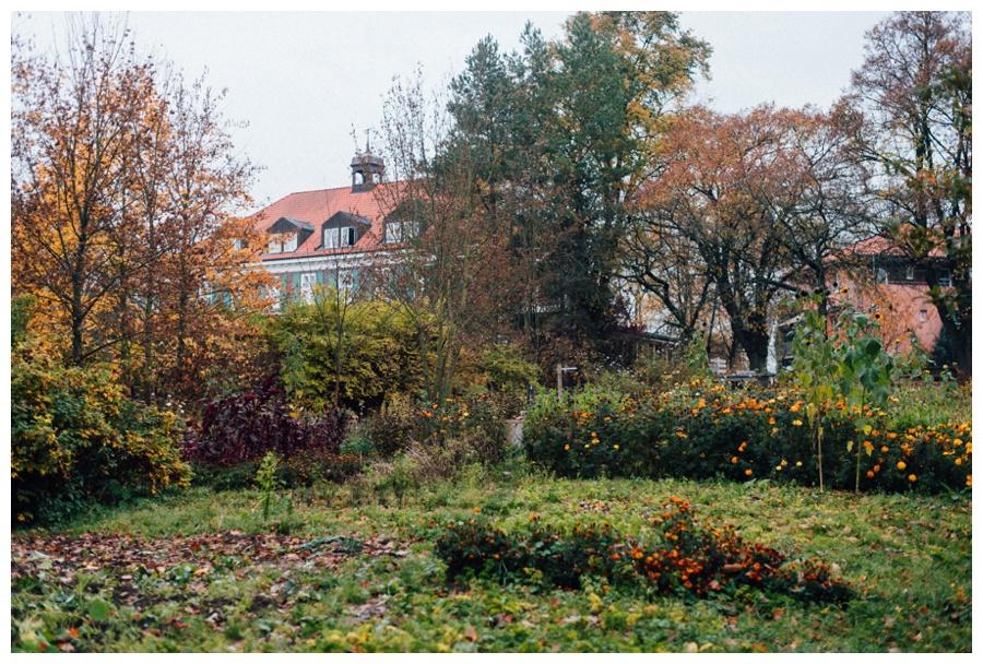Gutshaus Stellshagen_0008