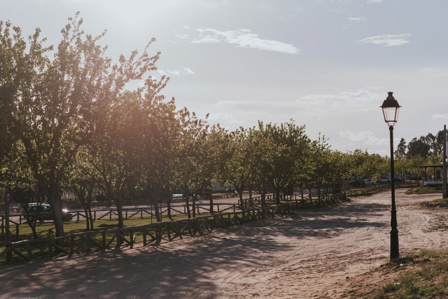 Eine Reise zu den spanischen Erdbeeren