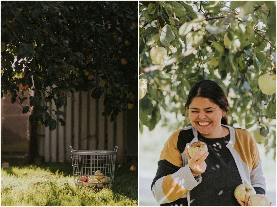 veganer Apfelkuchen - Herbstzeit ist die schönste Zeit