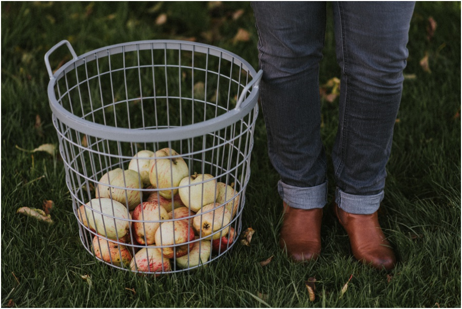 veganer Apfelkuchen - Apfelerntekorb