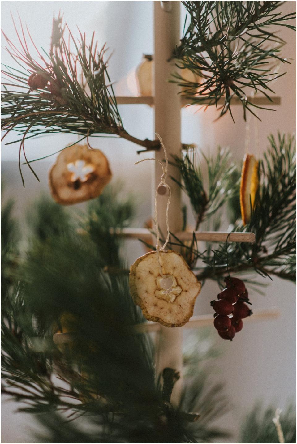 Ein nachhaltiger Weihnachtsbaum - getrocknete Äpfel und Orangen