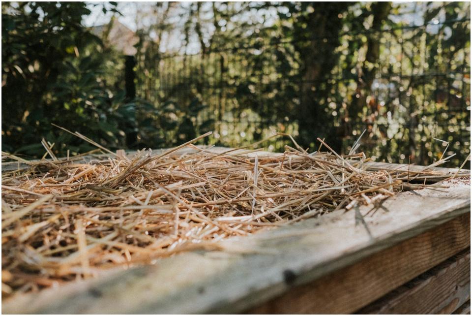 ökologisch gärtnern: das Hochbeet