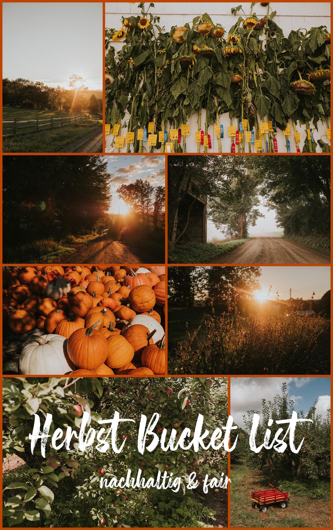 Herbst Bucket List nachhaltig und fair