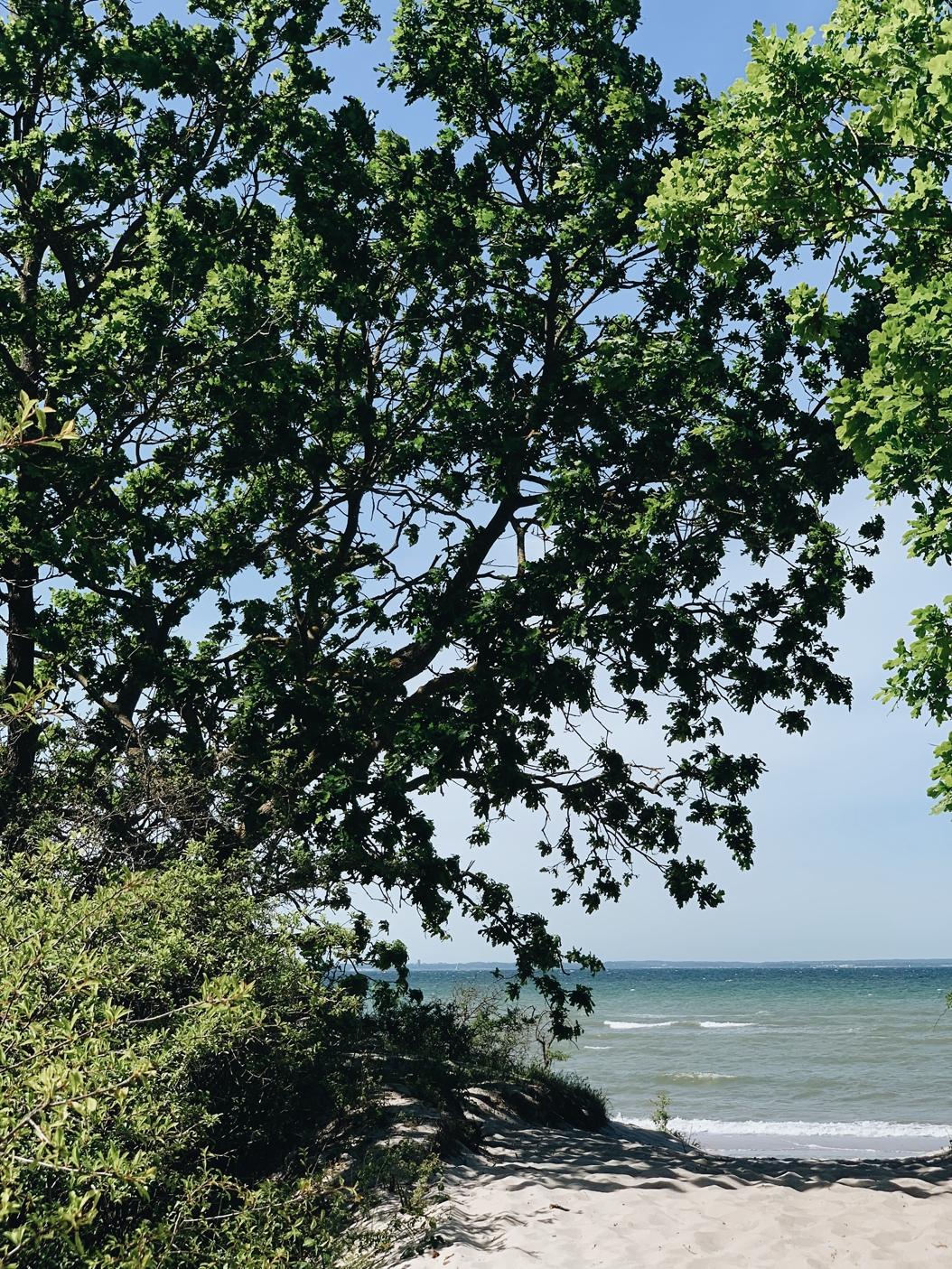 Tagebuch eines Sommers | Sonntag am Meer