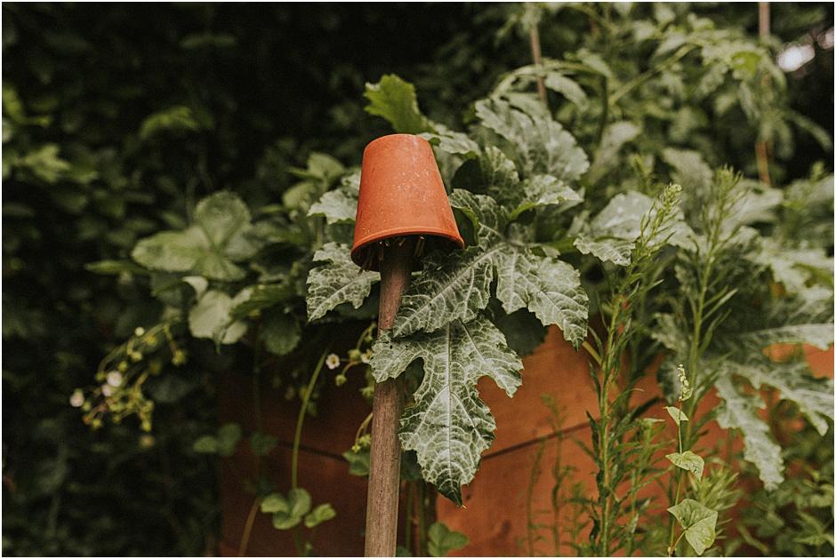 10 Tipps für einen nachhaltigen und umweltfreundlichen Garten