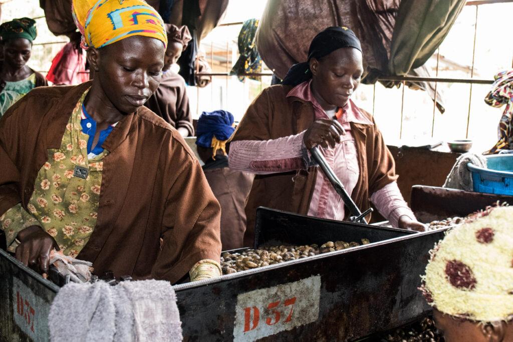 Wie fair ist der faire Handel? Changing the rules mit gebana